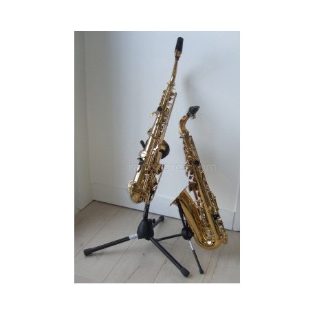 THE ENTERTAINER (saxes duet)