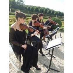 AIN'T SHE SWEET ? ( string quartet)