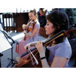 Blue blues (violin, cello)