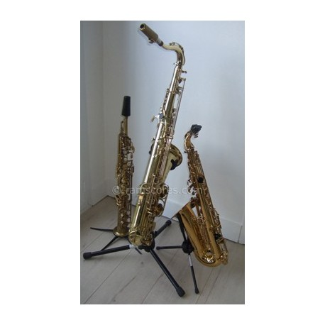 LA PANTHERE ROSE - Partition Niveau medium (saxes trio)