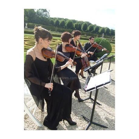THE SUMMER KNOWS ( summer of 42) - cuarteto de cuerdas