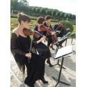 THE SUMMER KNOWS ( summer of 42) - cuerda cuarteto