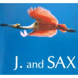 J.AND SAX THEME (CD)